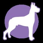 Largedog-icon