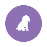 Smalldog-icon