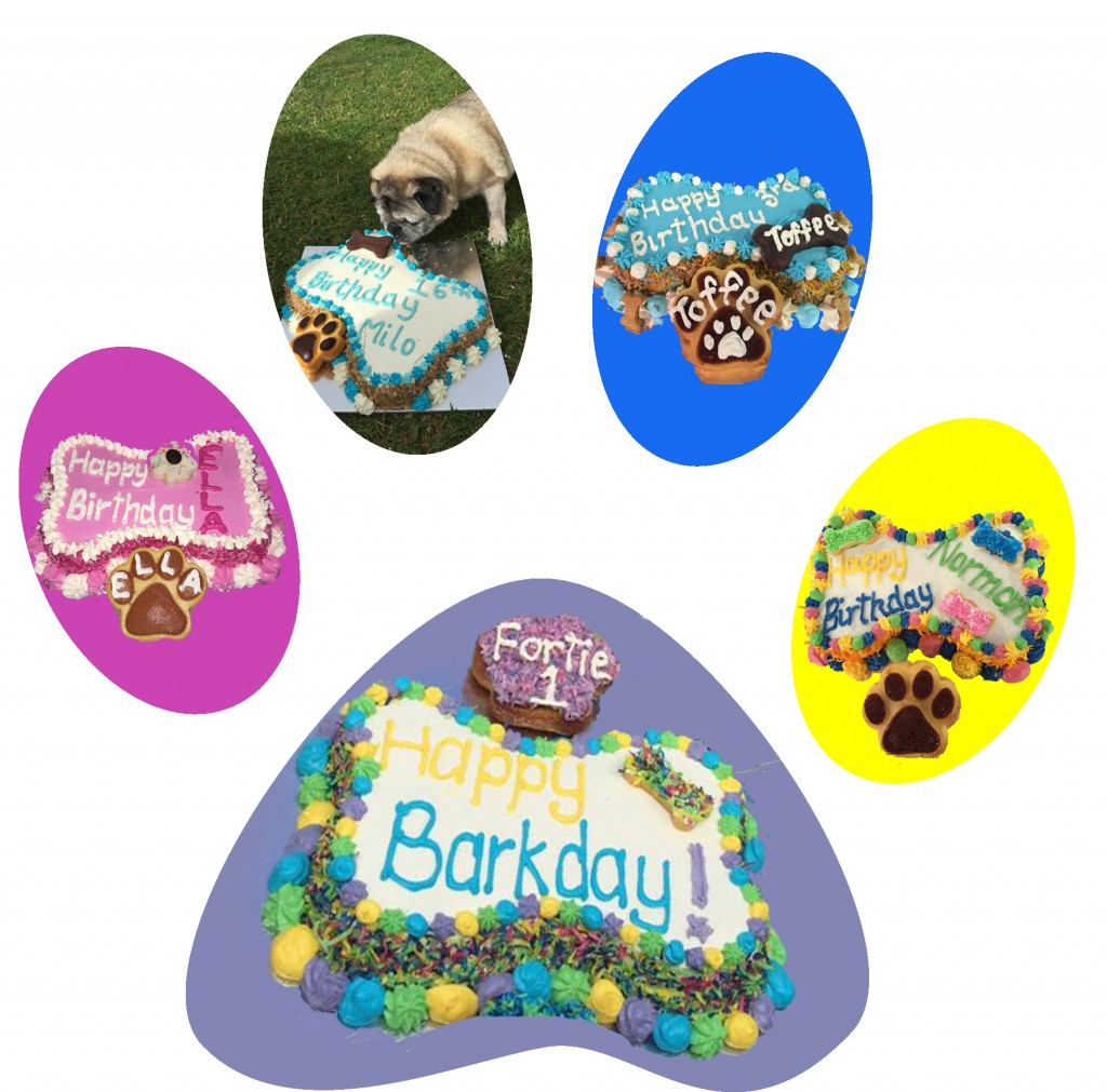 FurBaby Cakes
