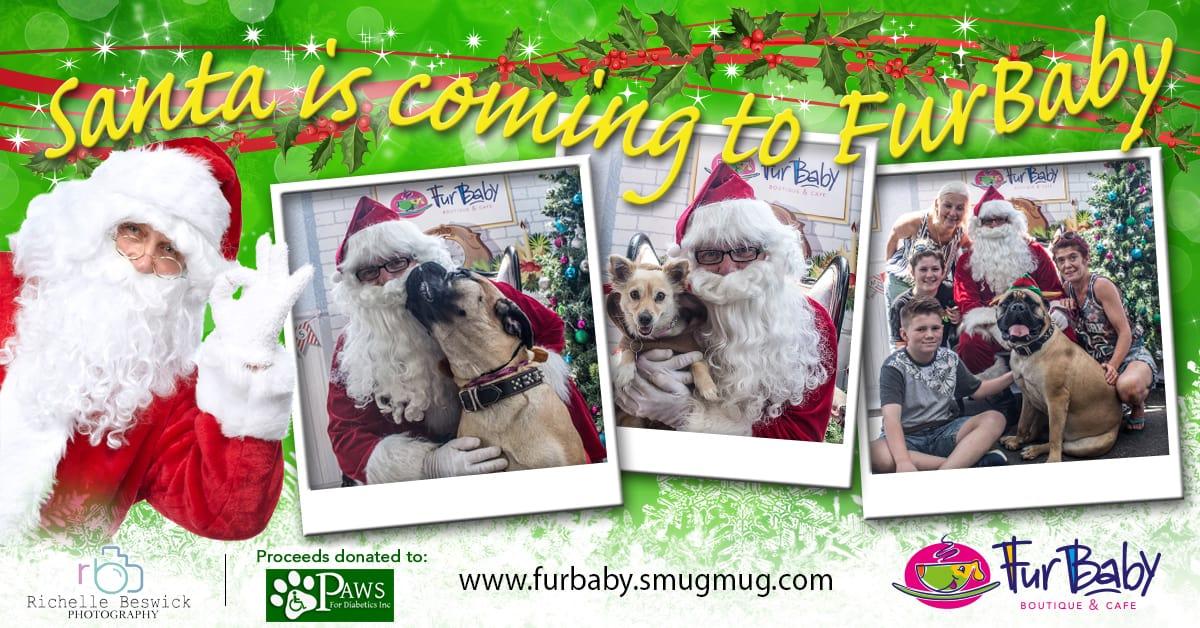 FurBaby Santa Paws_Banner 1