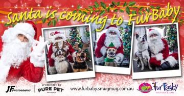 FurBaby Santa Paws_Banner 2