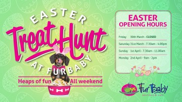 FB EASTER HUNT FACEBOOK BANNER_Small