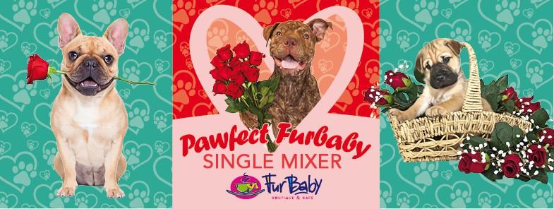 FACEBOOK Singles Mixer